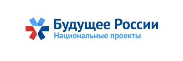 О реализации национальных проектов на территории городского округа Тольятти в 2019 году