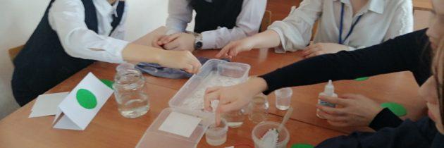 В  сетевой междисциплинарной Школе Синергия обучающиеся путешествовали в мир воды и ее свойств