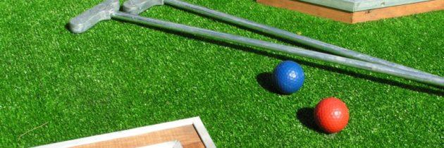 Экспертиза обобщения понятийного аппарата гольфиста