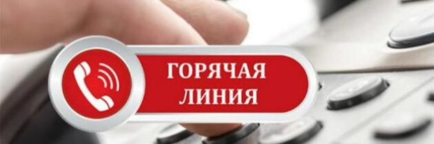 Телефоны «горячей линии» по вопросам организации летнего отдыха и занятости детей