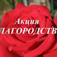 В Самарской области проходит общественная Акция «Благородство»
