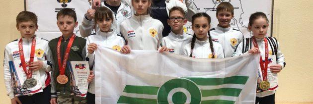 Всероссийские соревнования по тхэквондо «Кубок Рязанского Кремля»